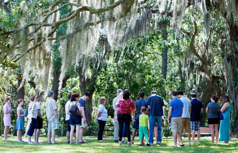 Under the oaks at Honey Horn
